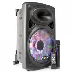 "170.033 Sistema portatil de sonido 12"" BT/MP3/USB/SD/VHF/LED FENTON FPS12"