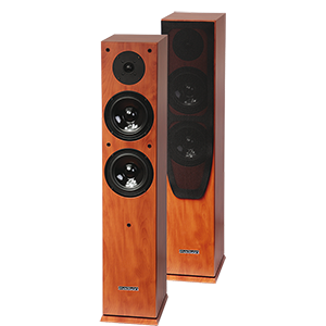 BAFLES HI-FI DE 2 V?AS 120W MADERA MADISON MAD-65WD